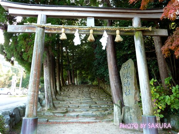 神魂神社(かむすじんじゃ) 鳥居